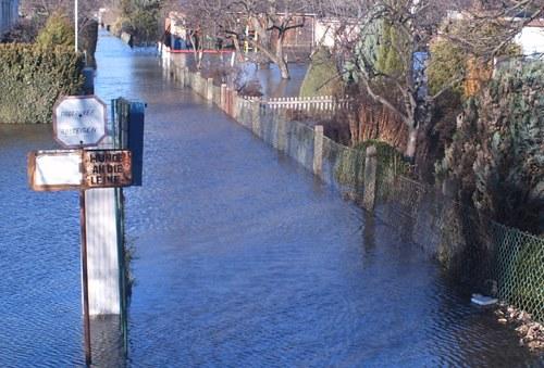 """Proteste wegen Hochwasser: """"Der H(a)ase ist ein Fluchttier"""""""