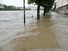 Jahrhundertflut jetzt alle zehn Jahre?