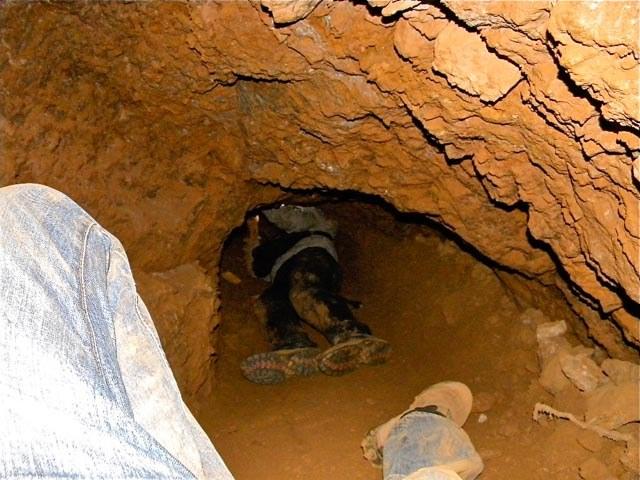 Südafrika: Mineneigner will über 200 Kumpel lebendig begraben