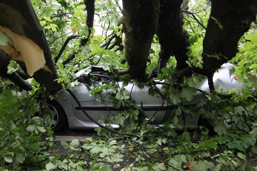 Regionale Umweltkatastrophe in Nordrhein-Westfalen