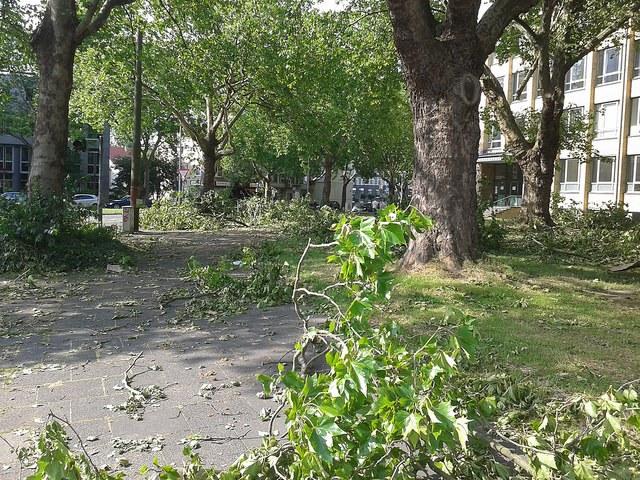 Naturkatastrophenbilanz 2014: Geringere Schäden durch Wetterextreme und Erdbeben?