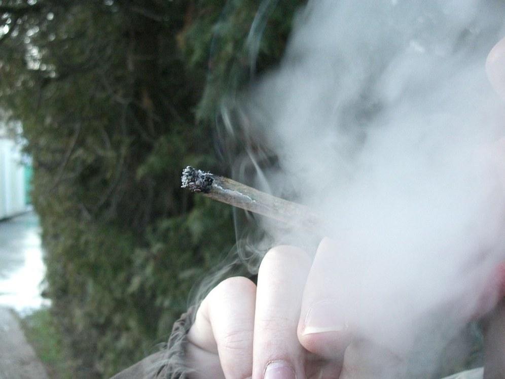 Grüne Drogenpolitik: Abkassieren und Ruhigstellen