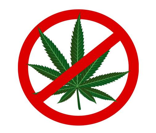 Legalisierung von Cannabis? Kampf dem Drogensumpf!