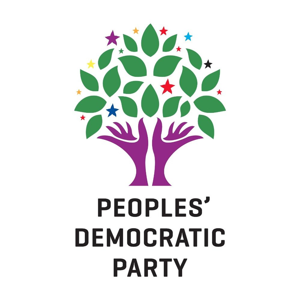 Spontane Siegesfeiern der HDP in Köln, Mannheim und Frankfurt