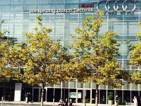 Ingolstadt: Schwarze Flecken auf Stadlers weißer Weste