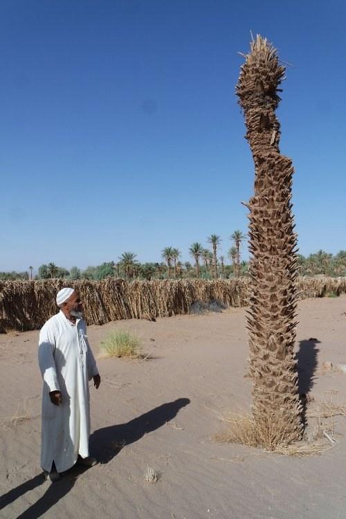 Marokko bereitet sich auf Weltklimakonferenz vor - ICOR-Delegation bei Großdemo am 13. November
