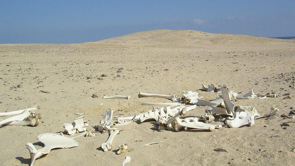 Die Hungerkatastrophe in Ostafrika und der El Nino