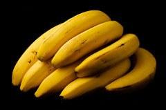 Pilz bedroht die Bananen