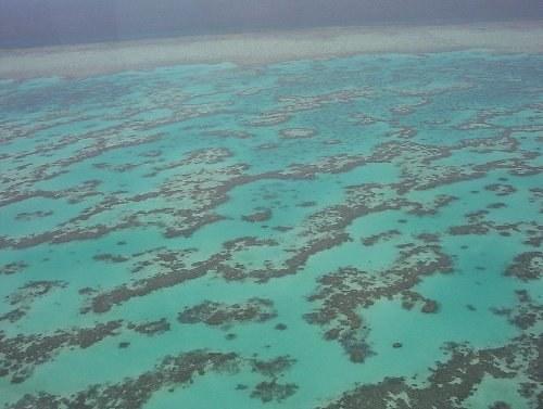 Gigantische Kohlemine in Australien bedroht einmalige Natur - aber es geht um noch mehr