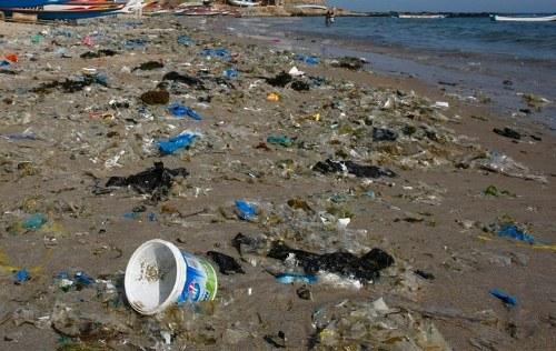 Ein Lösungsweg für die Verseuchung der Meere durch Plastikmüll?