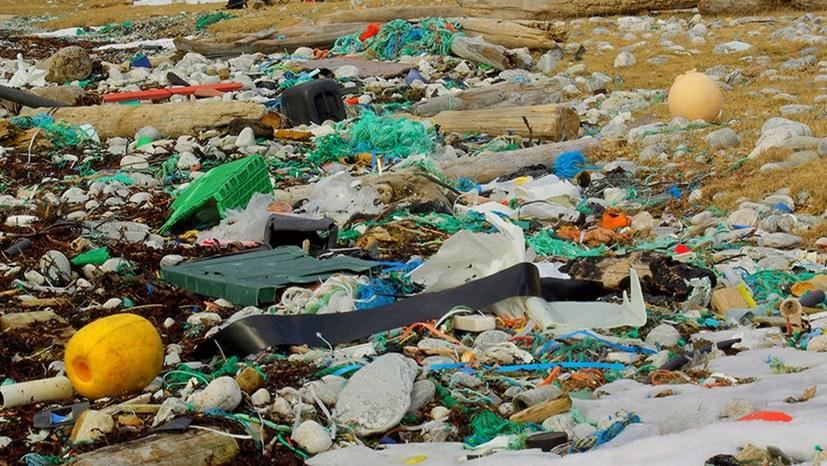Mikroplastik: Ein Desaster der Profitwirtschaft!