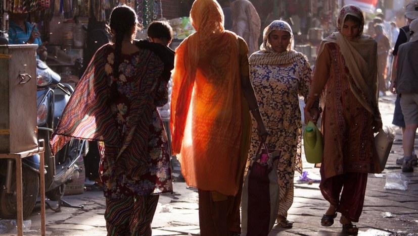 Mobilisiert zur spannenden Veranstaltung mit Vertreterinnen der indischen Frauenbewegung!