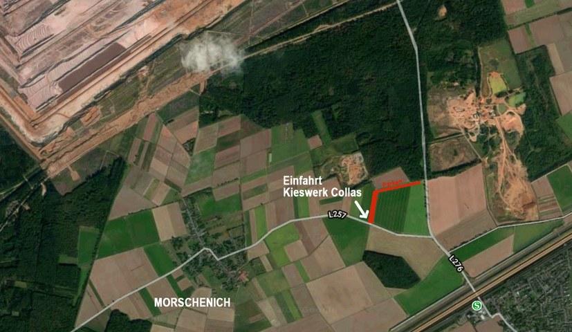Fünf Sonntagsspaziergänge im Hambacher Wald im September