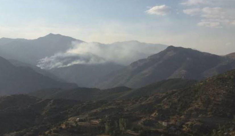 """""""Stoppt die Umweltzerstörung und Waldbrände in Dersim"""""""