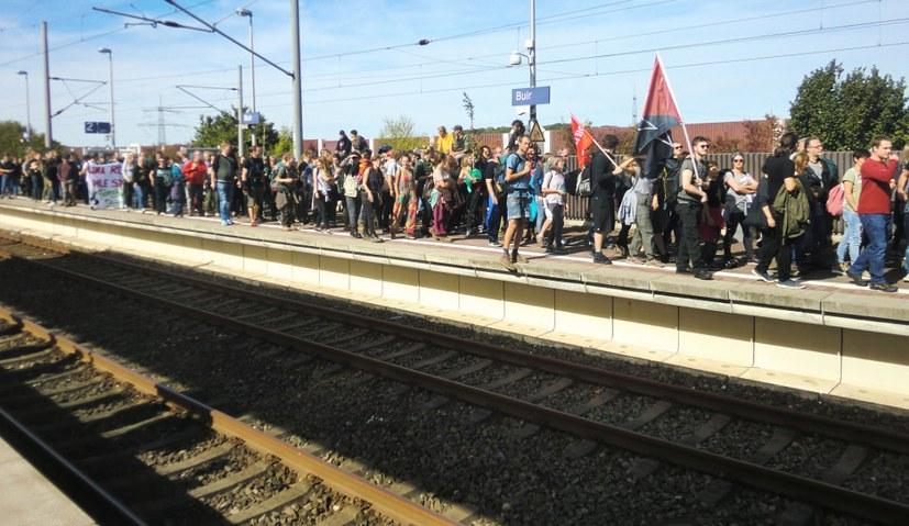 Proteste gegen Rodung verstärken sich