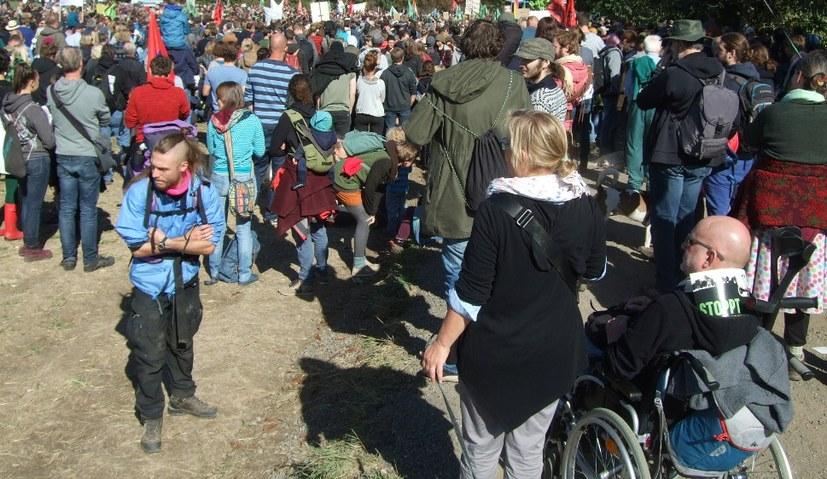 Mehr als 10.000 Menschen beim Waldspaziergang