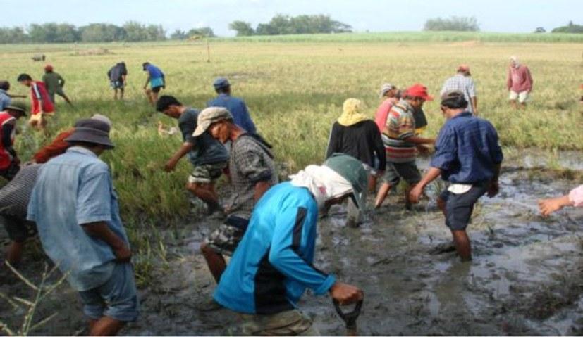 Protestiert gegen das Massaker an Zuckerrohrarbeiterinnen und -arbeitern!