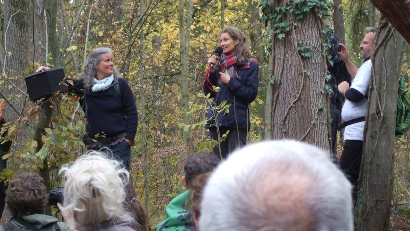 Rund 500 Teilnehmerinnen und Teilnehmer beim Waldspaziergang