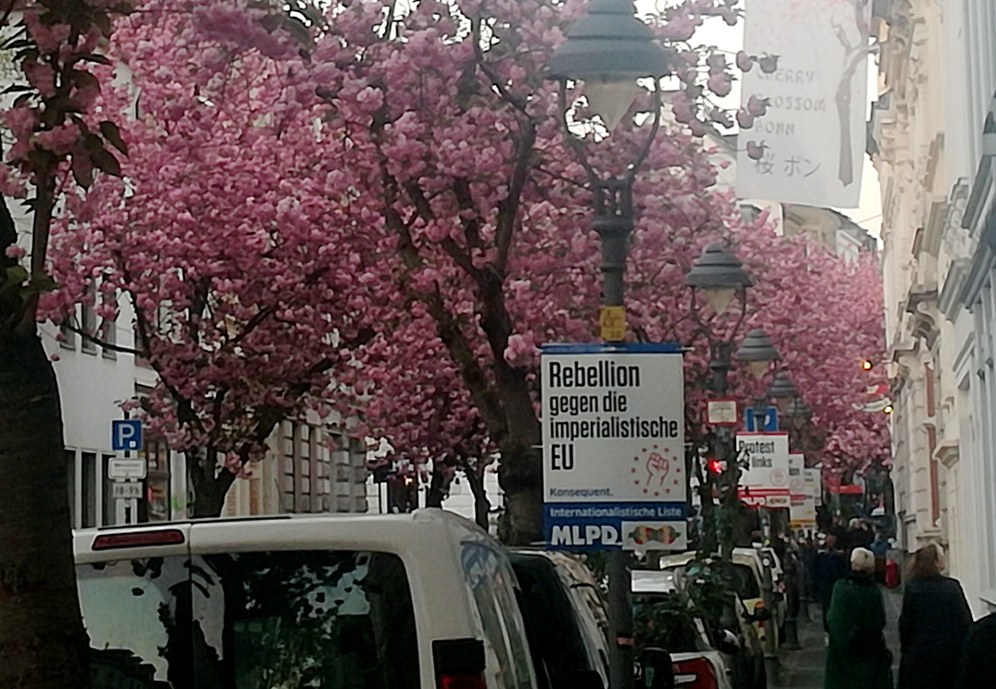 Rebellischer Frühling