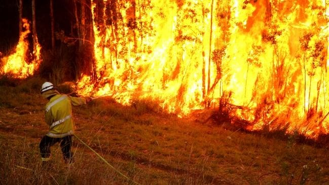 Verheerende Waldbrände in Australien und Proteste gegen die Regierung
