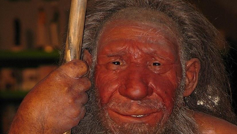 Neandertaler konnten in verschiedener Hinsicht hören und sprechen wie wir