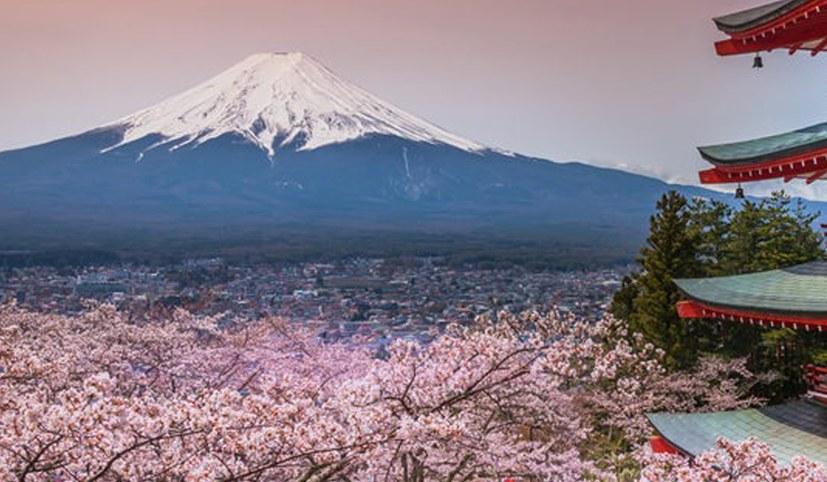 90% der Japaner für Verschiebung oder Absage der Olympischen Spiele