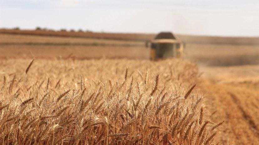 Klimakatastrophe wird zum russischen Roulette für Klein- und Mittelbauern