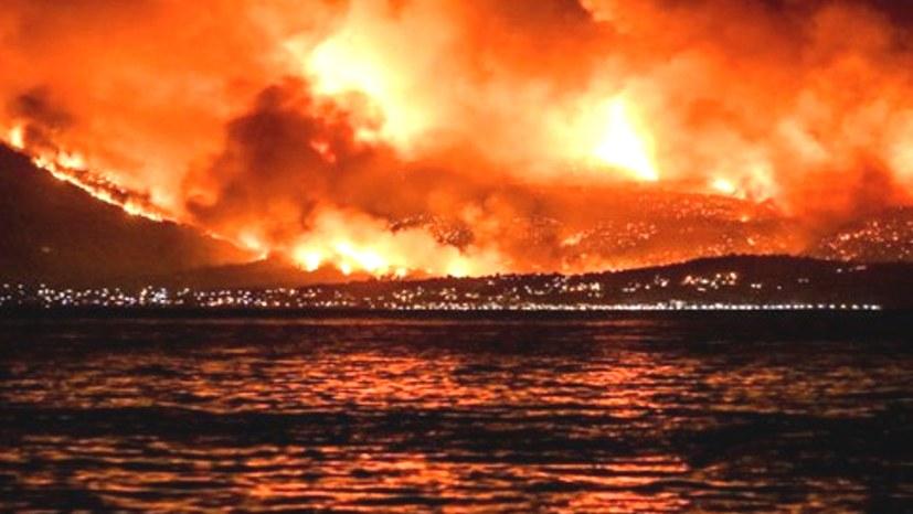 Waldbrände – eine komplizierte Gemengelage