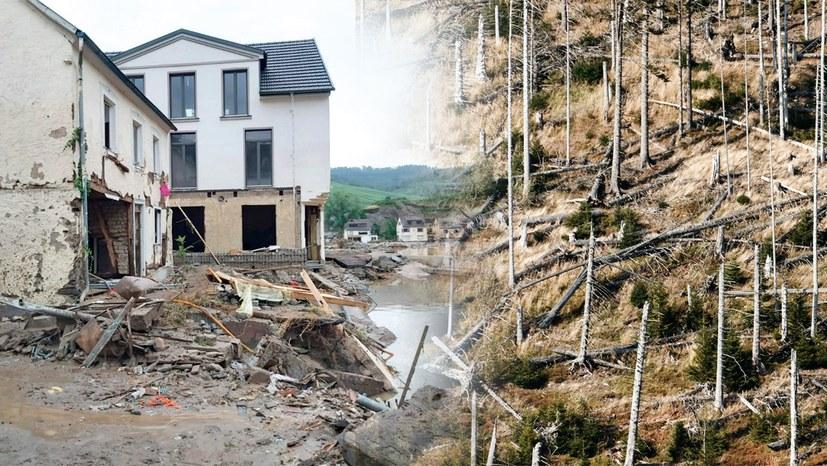 Katastrophenalarm: Drastische Zunahme klimabedingter Umweltkatastrophen